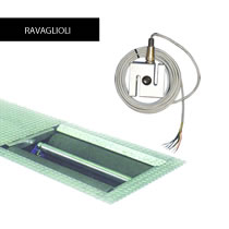 Replacement Spare Electrical Parts for Ravaglioli Roller Brake Testers